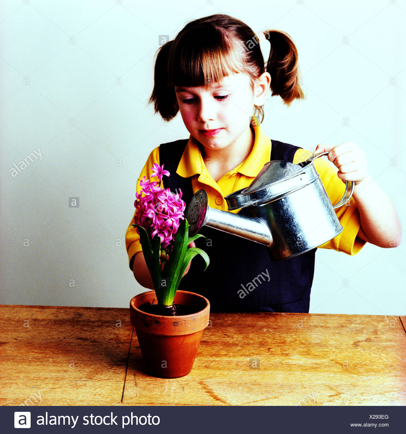 Une petite fille d'arroser une plante Photo Stock