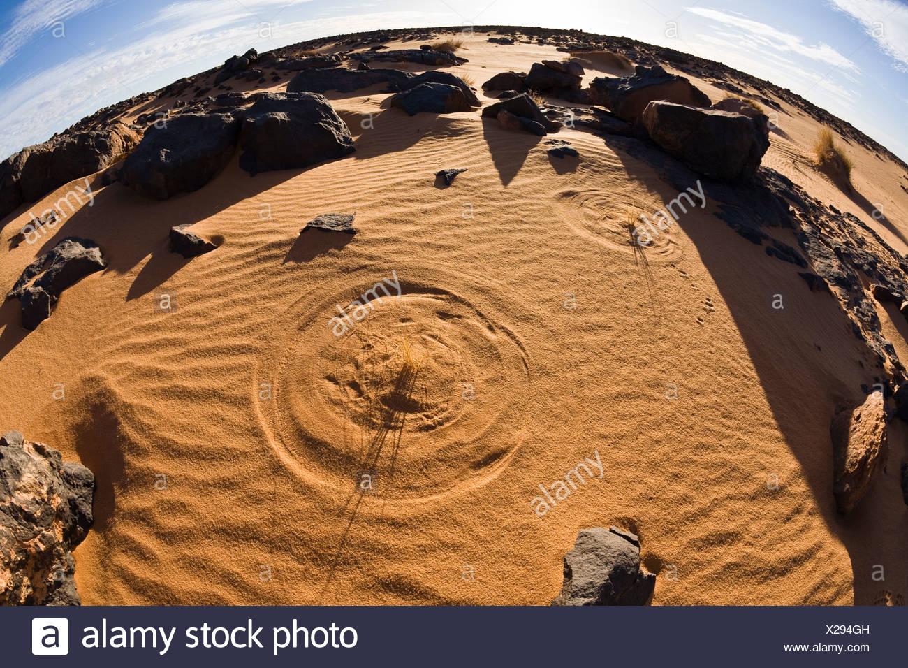 Brins d'herbe le dessin des cercles dans le sable, désert, désert de pierre noire, la Libye, l'Afrique Banque D'Images