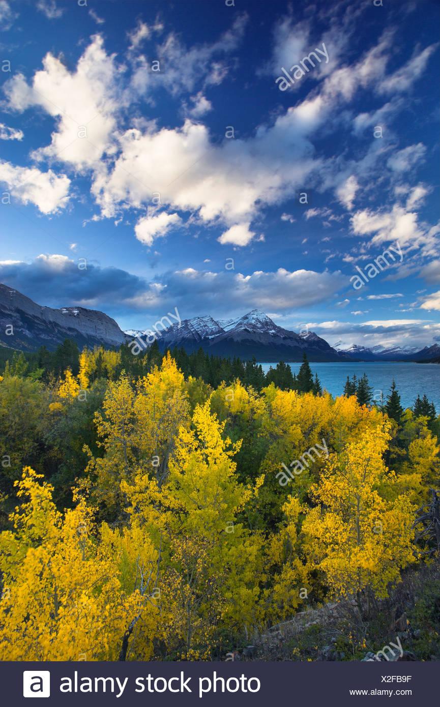 Abraham et Elliot Lake, Pointe des plaines de Kootenay, Alberta, Canada Photo Stock