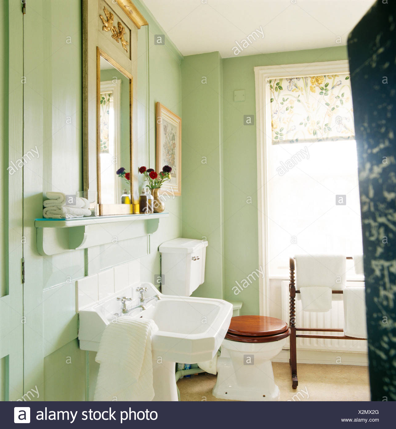 Vert pastel blanc salle de bains avec lavabo et toilettes avec siège ...