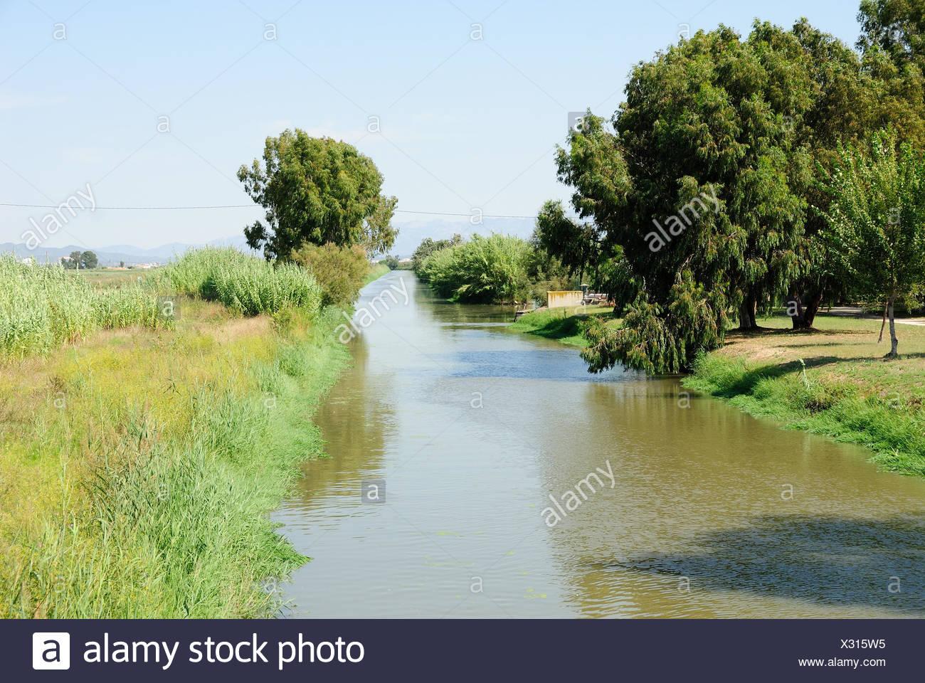 Ebrodelta ambiance Photo Stock
