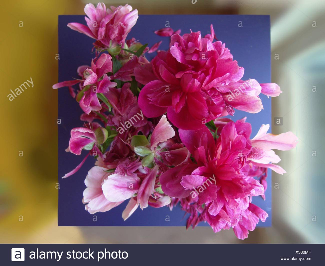 Bouquet De Pivoines De Au Dessus Des Fleurs Bouquet Bouquet De