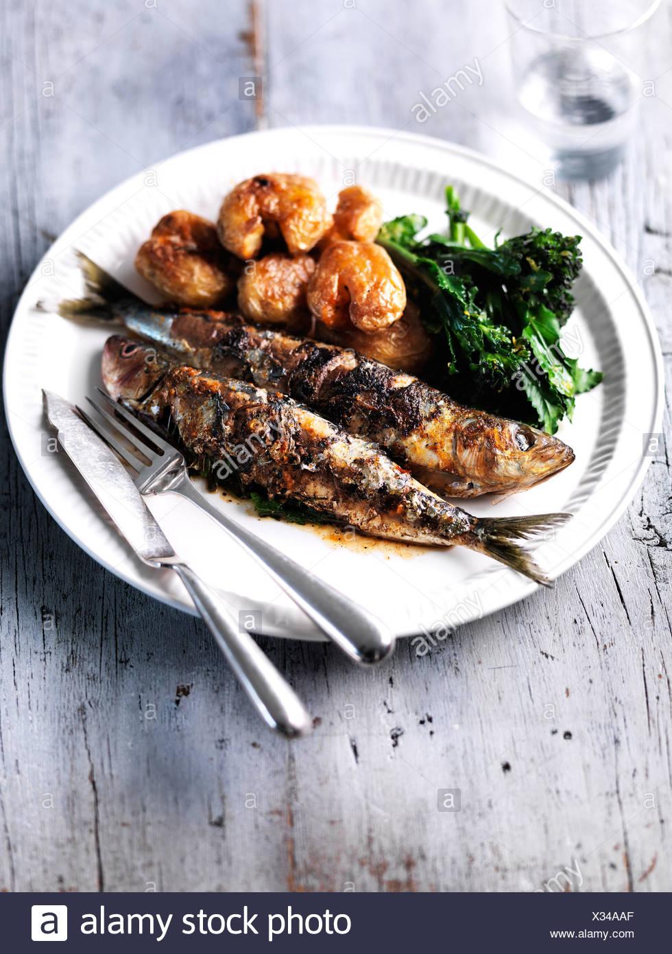 Les sardines fraîchement préparé Photo Stock