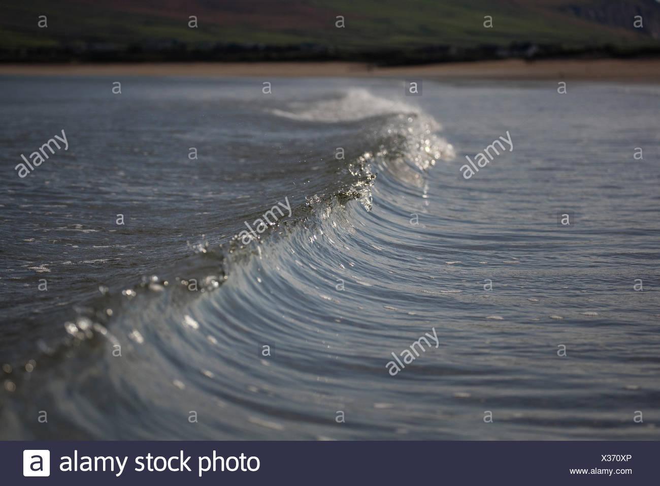 Vague se brisant sur la plage, Ballyferriter, comté de Kerry, Irlande Banque D'Images
