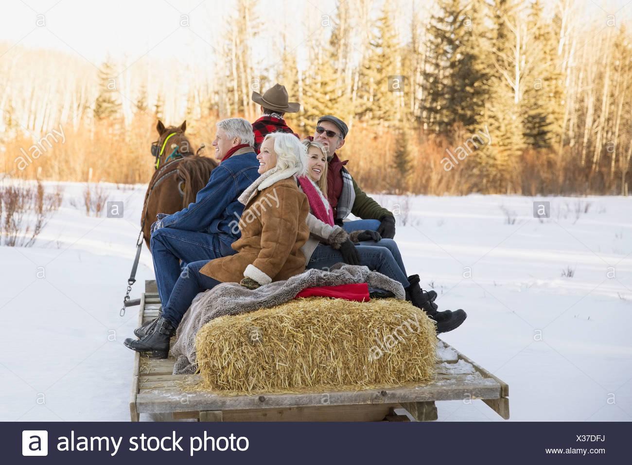 Amis matures équitation traîneau à cheval Photo Stock