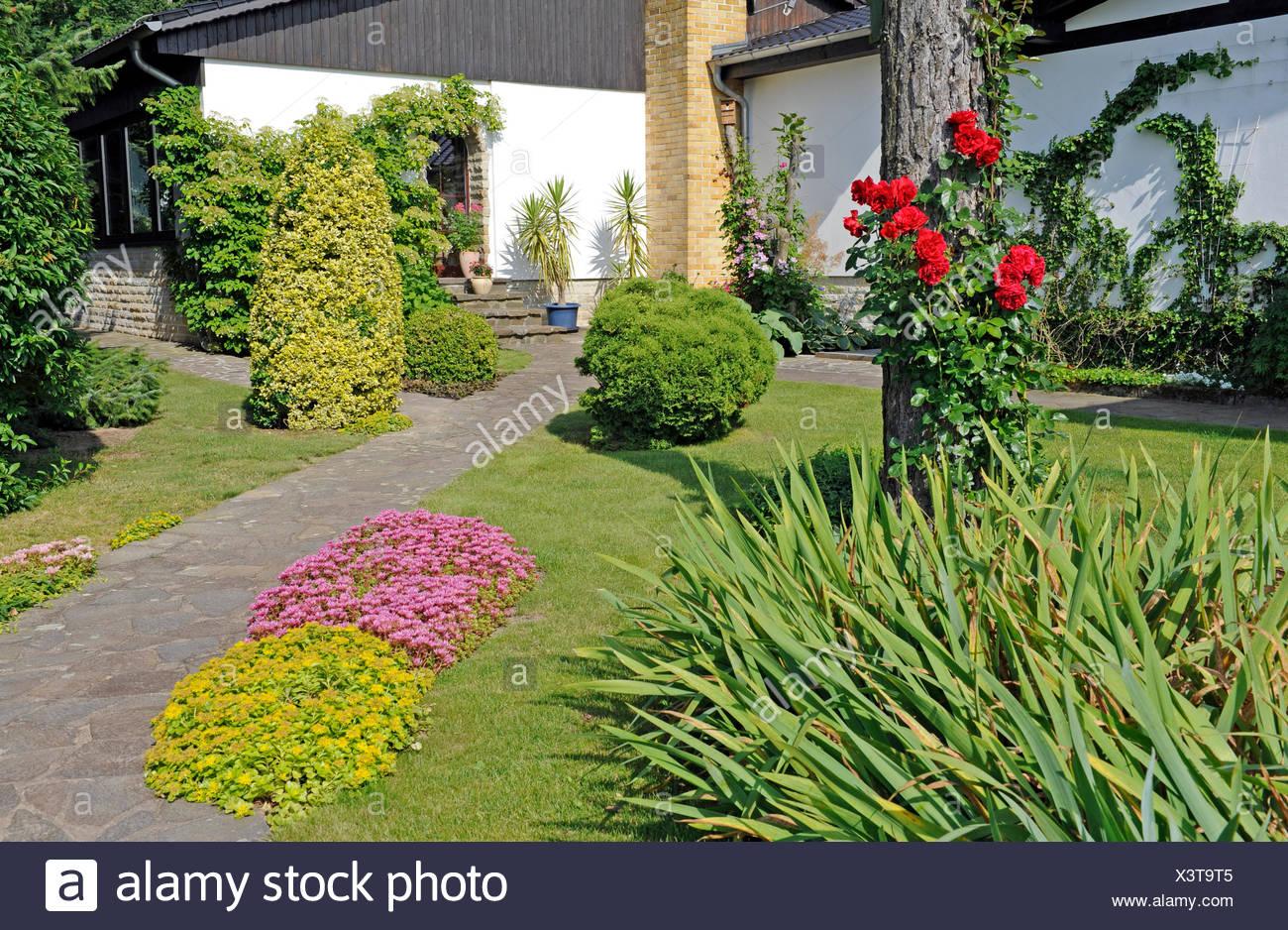 Jardin de devant d\'une maison de campagne, les différents bois d ...