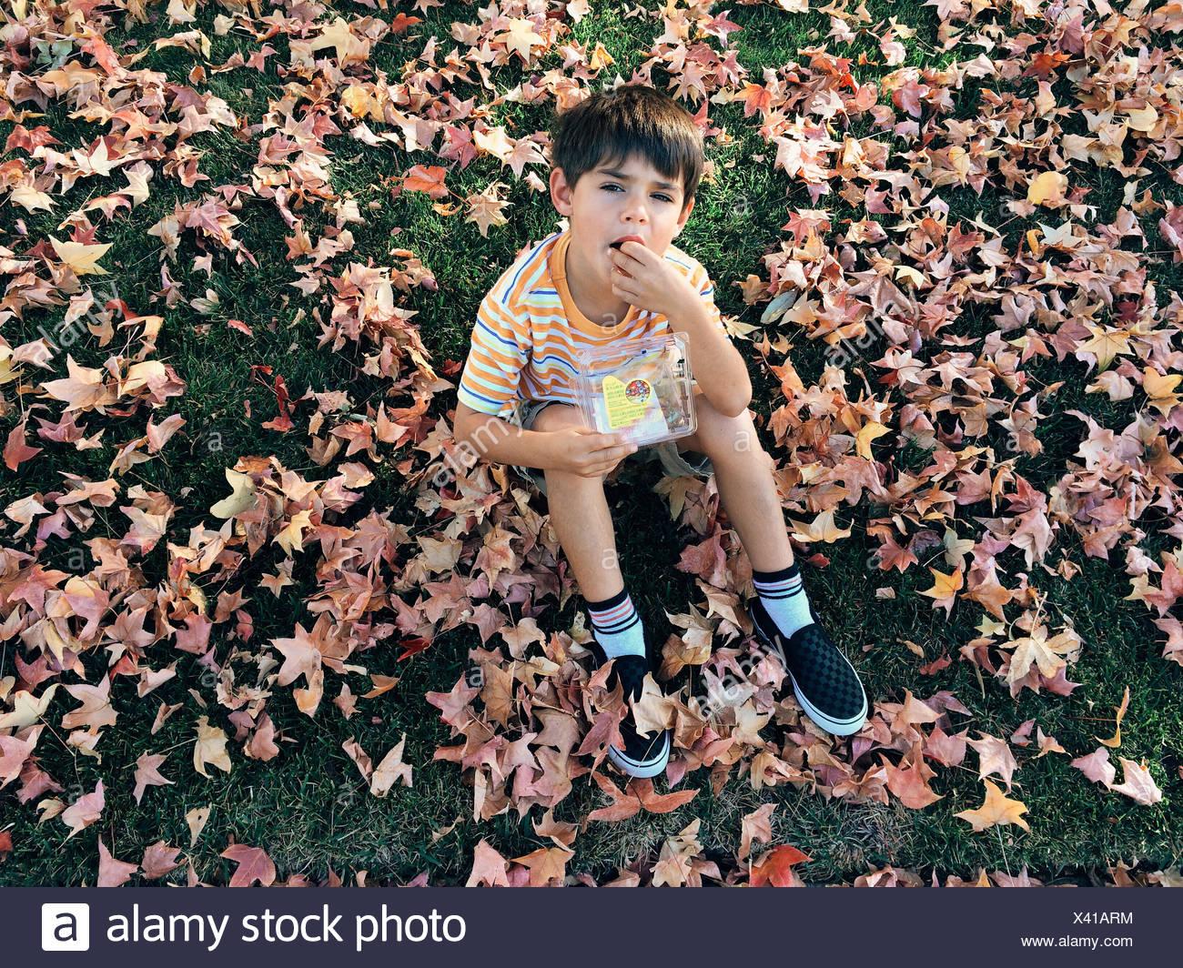 Enfant dans le parc Photo Stock