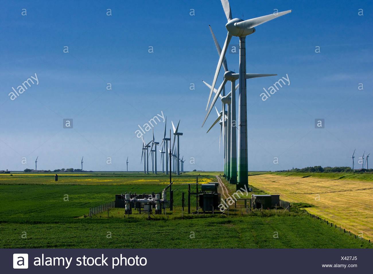 L'énergie éolienne, l'usine Niebuell, Schleswig-Holstein, Allemagne Photo Stock
