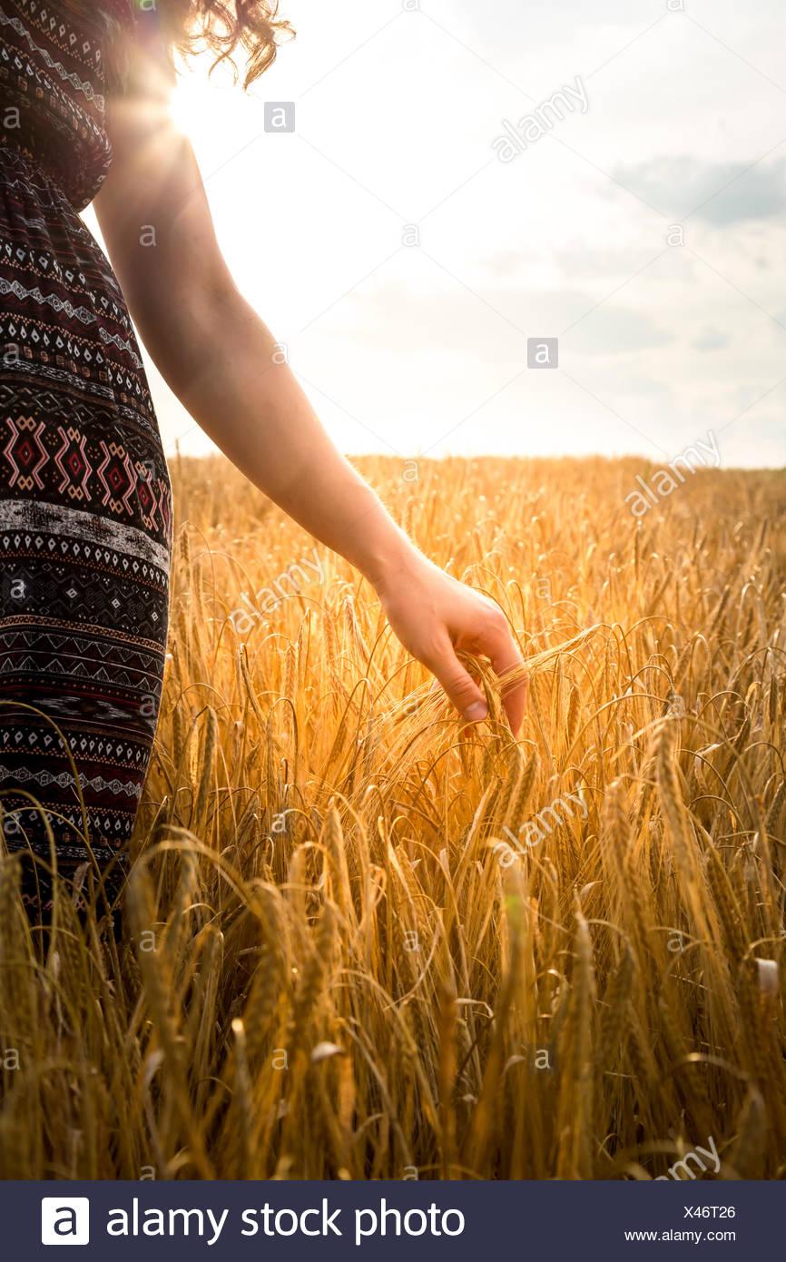 Young woman standing in barley field dans la soirée Photo Stock