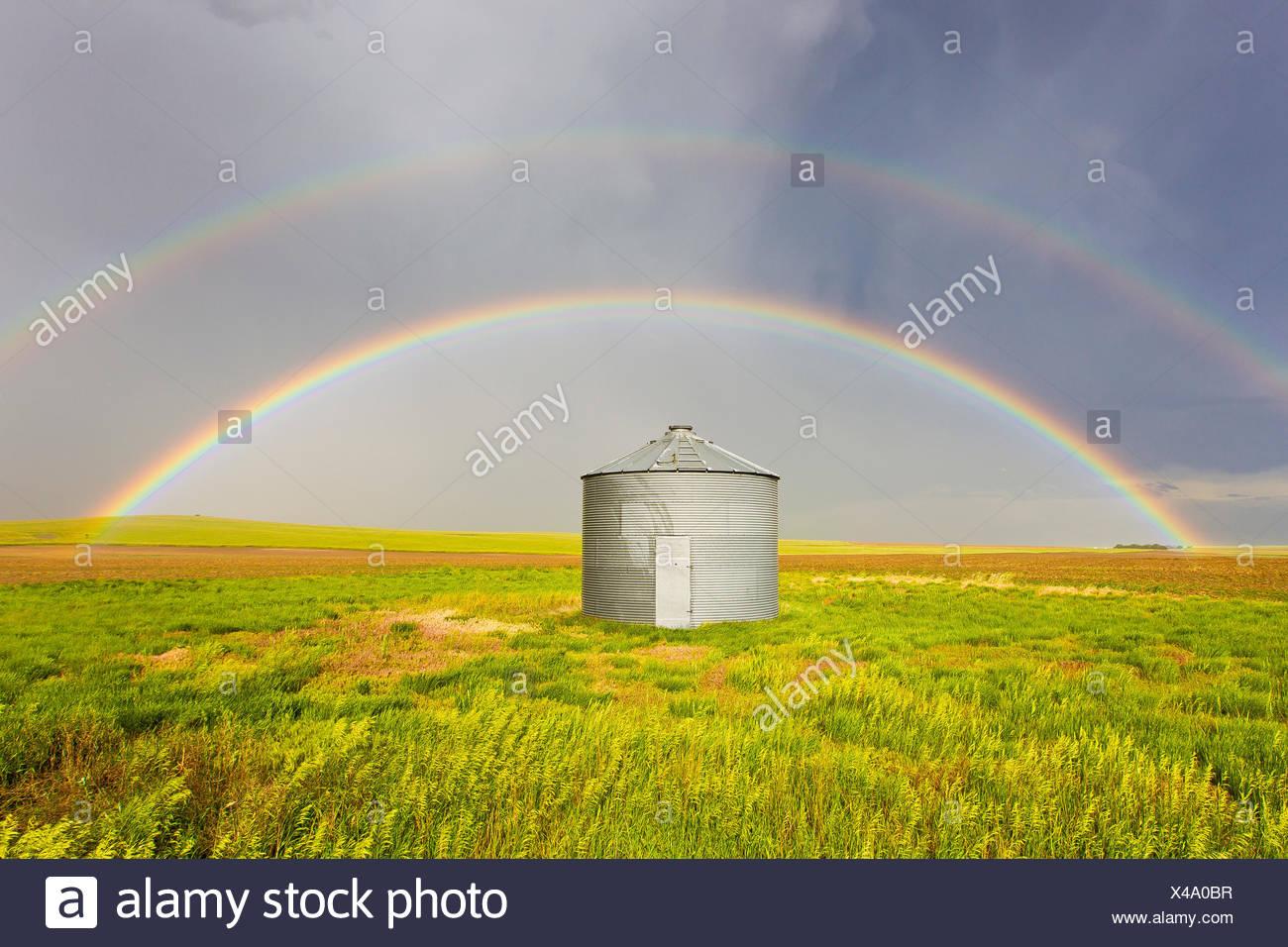 Un double arc-en-ciel est parfaitement centrée sur un silo à grains et champ de blé vert après un orage passe au Colorado. Photo Stock