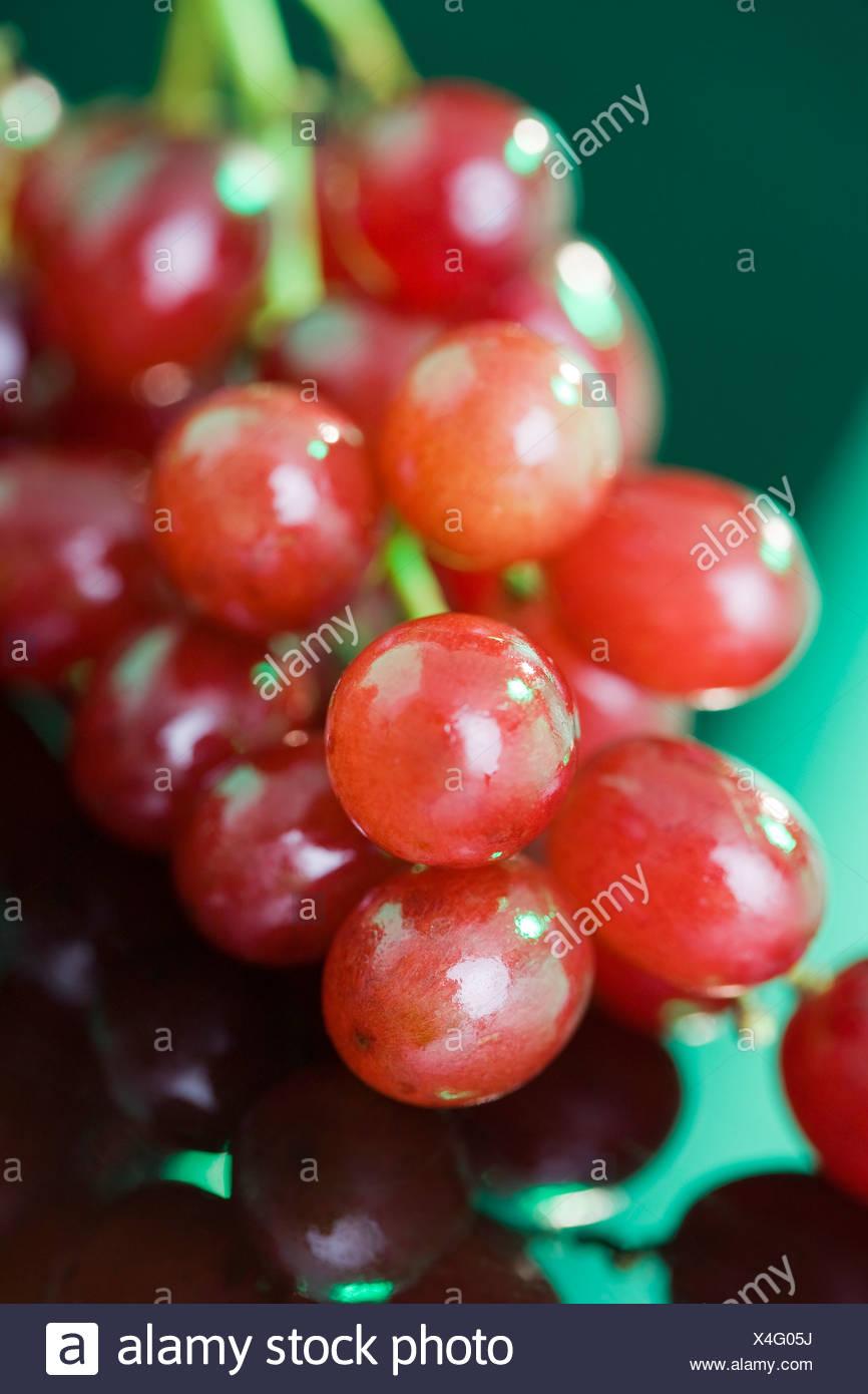 Les raisins rouges, close-up Photo Stock