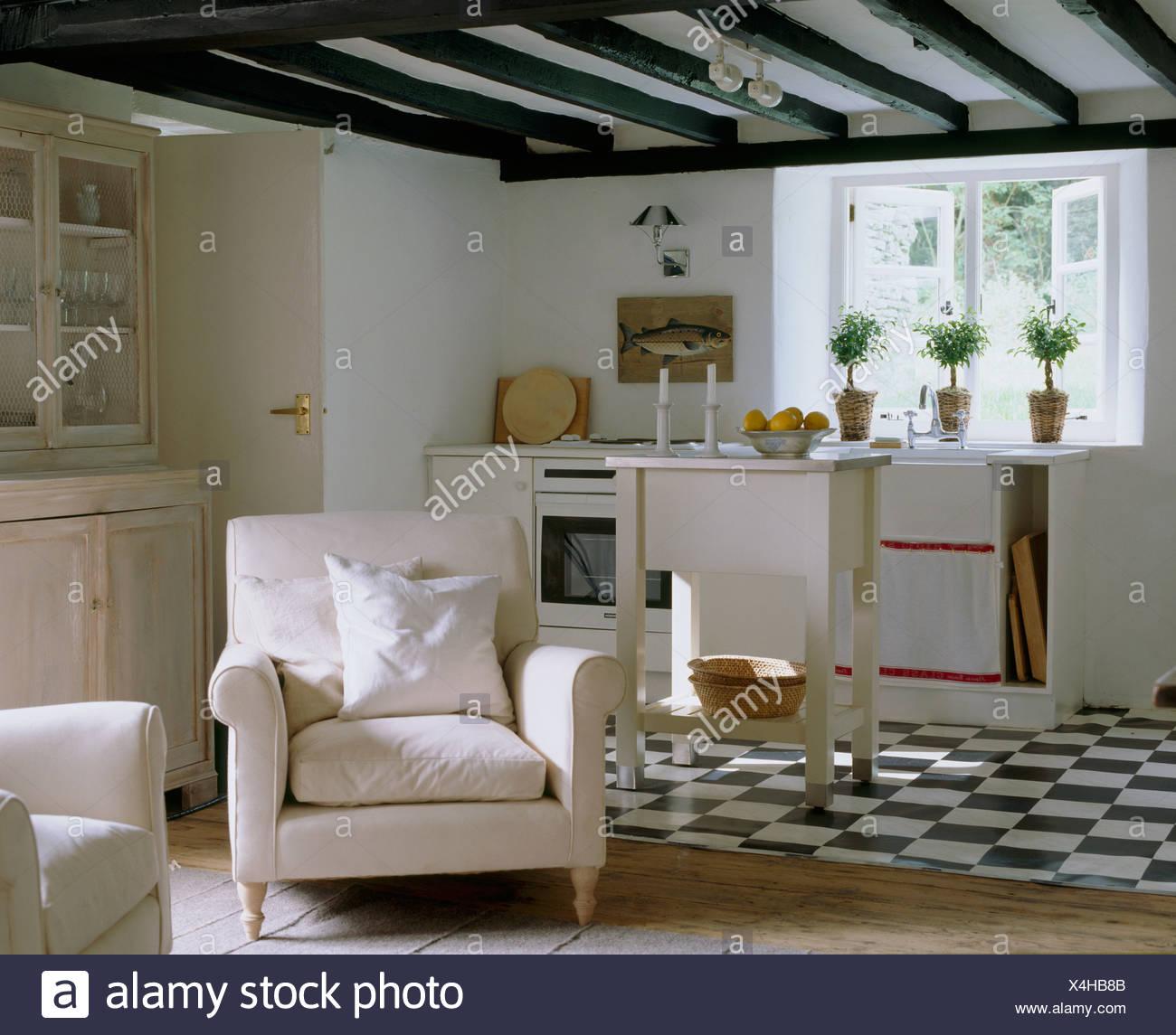 Noir +blanc en carrelage blanc chalet cuisine ouverte sur un ...