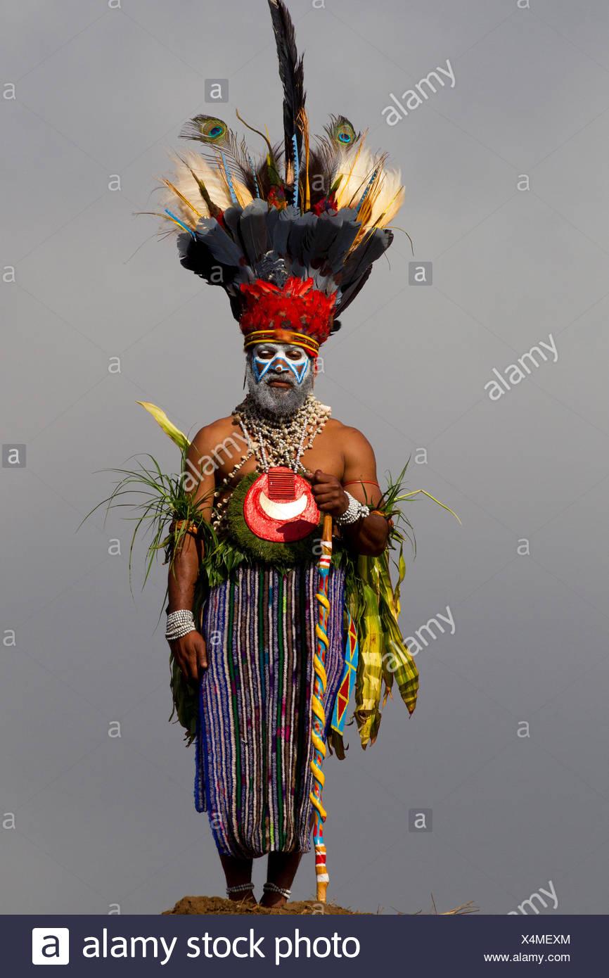 La tribu des hautes terres de l'Ouest et de son oiseau de paradis Coiffure Photo Stock