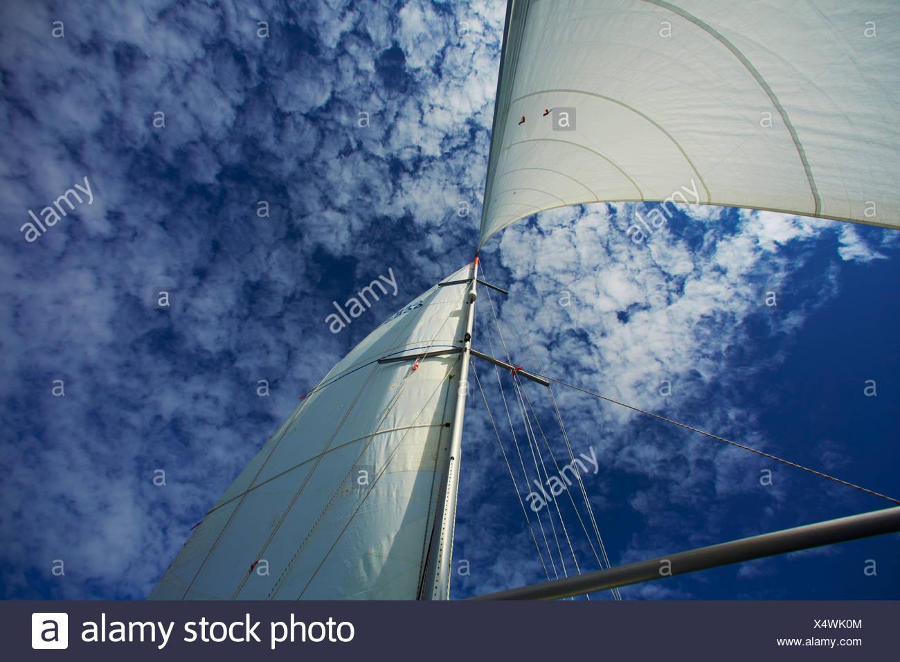 Bateau à voile sur la mer Baltique Banque D'Images