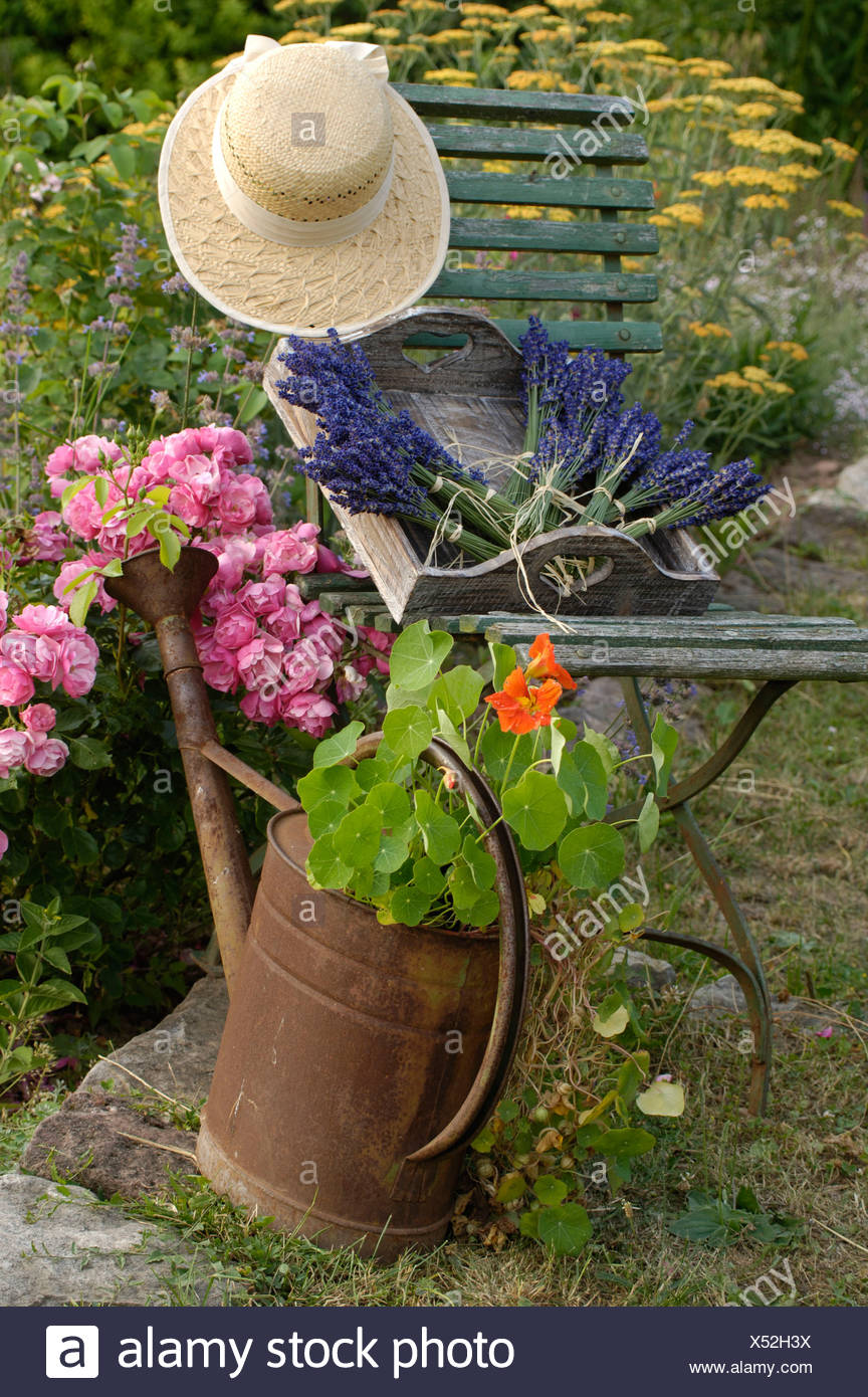 Jardin nature morte Photo Stock