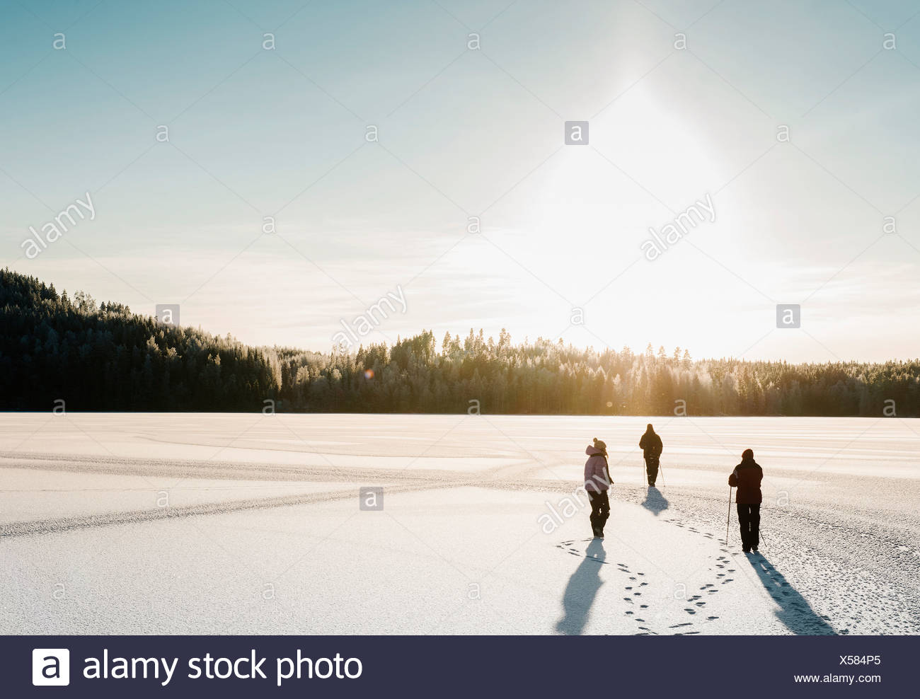 Trois personnes de la marche nordique dans la neige champ couvert Photo Stock