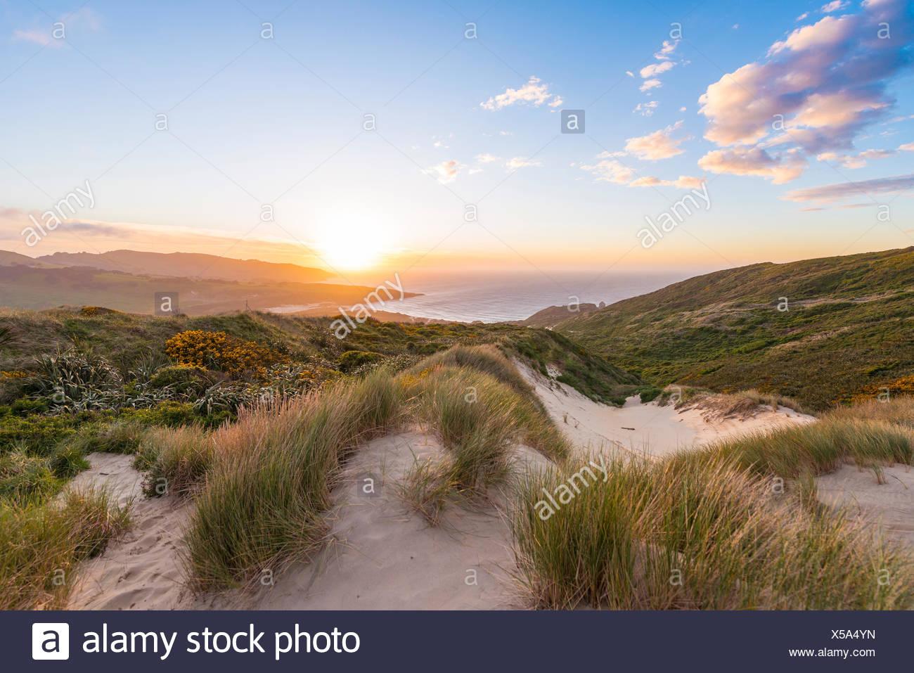 Coucher de soleil sur la mer, les dunes, la baie de phlébotome, Dunedin, Otago, péninsule d'Otago, Southland, Nouvelle-Zélande Photo Stock