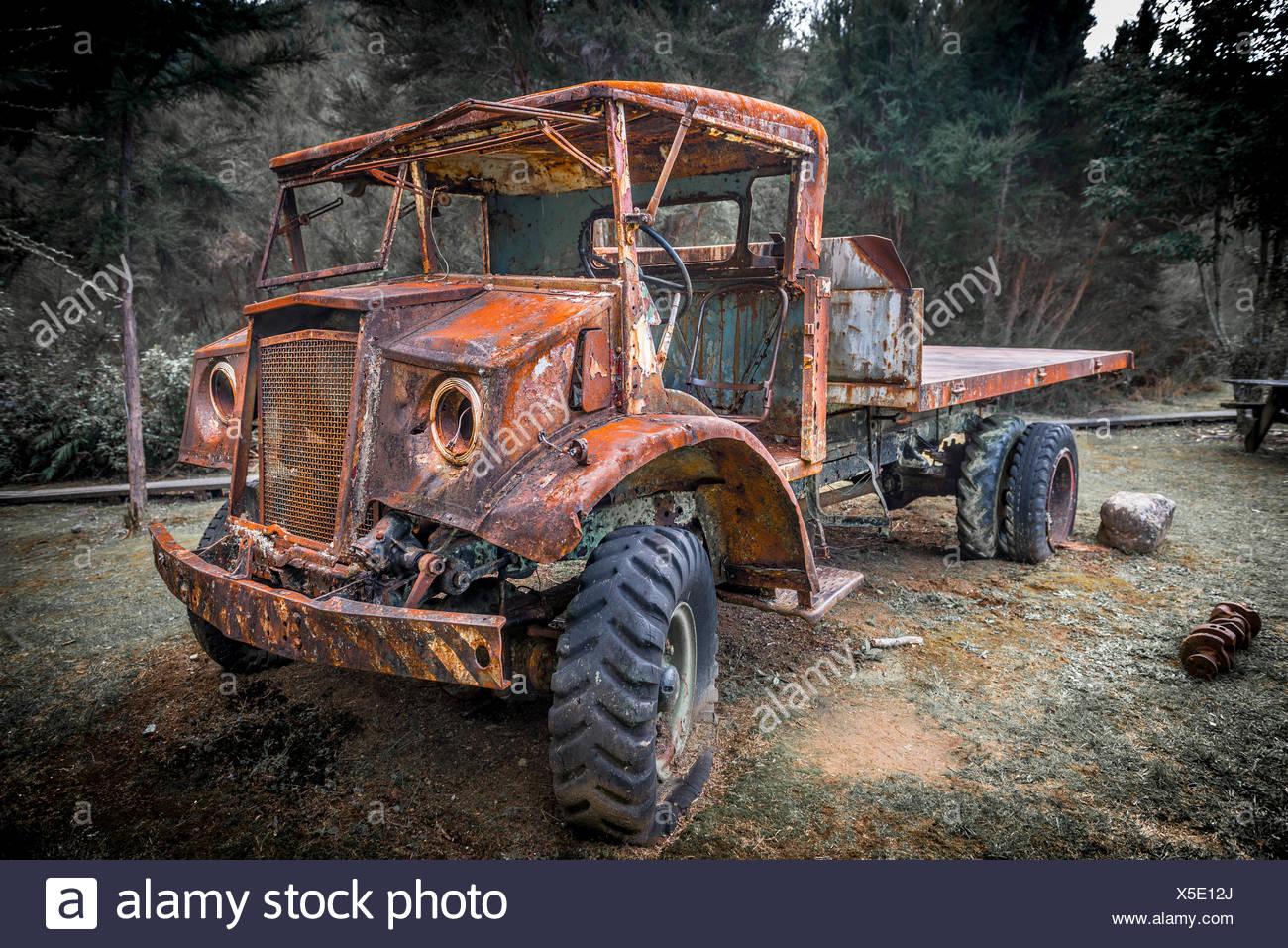 Vieille voiture rouillée en forêt, Inangahua, Région de la côte ouest, Southland, Nouvelle-Zélande Banque D'Images
