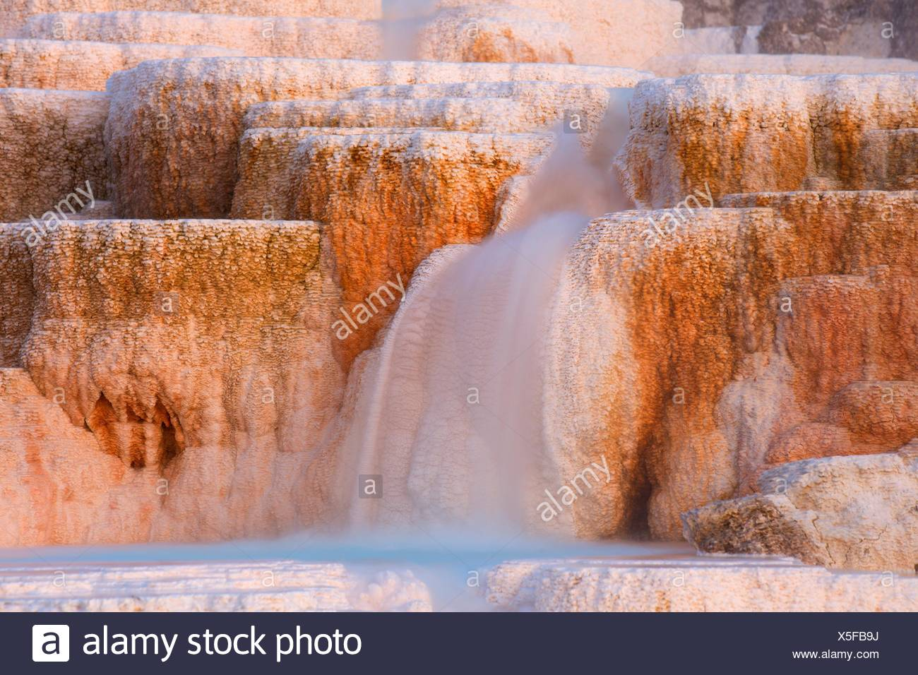 Au printemps la palette de Mammoth Hot Springs, Parc National de Yellowstone, Wyoming. Photo Stock