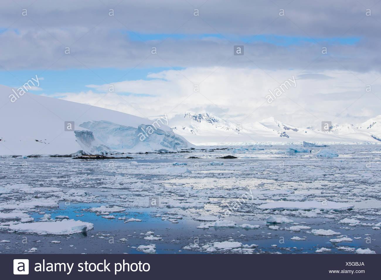 La glace près de la rive dans l'Antarctique. Photo Stock