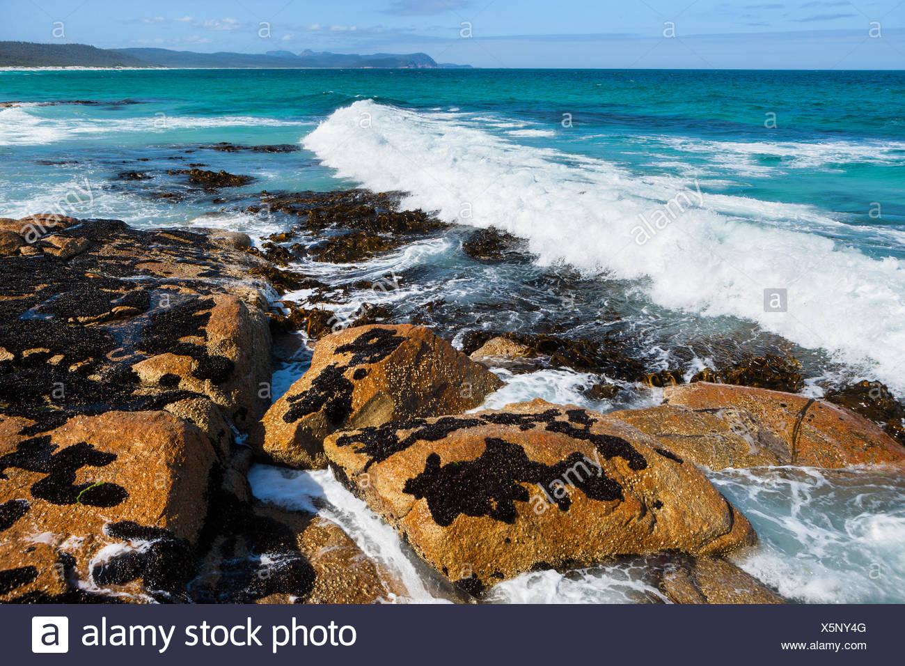 Plages, l'Australie, la Tasmanie, sur la côte est, dans la mer, côte, vagues, rochers, falaises, Banque D'Images