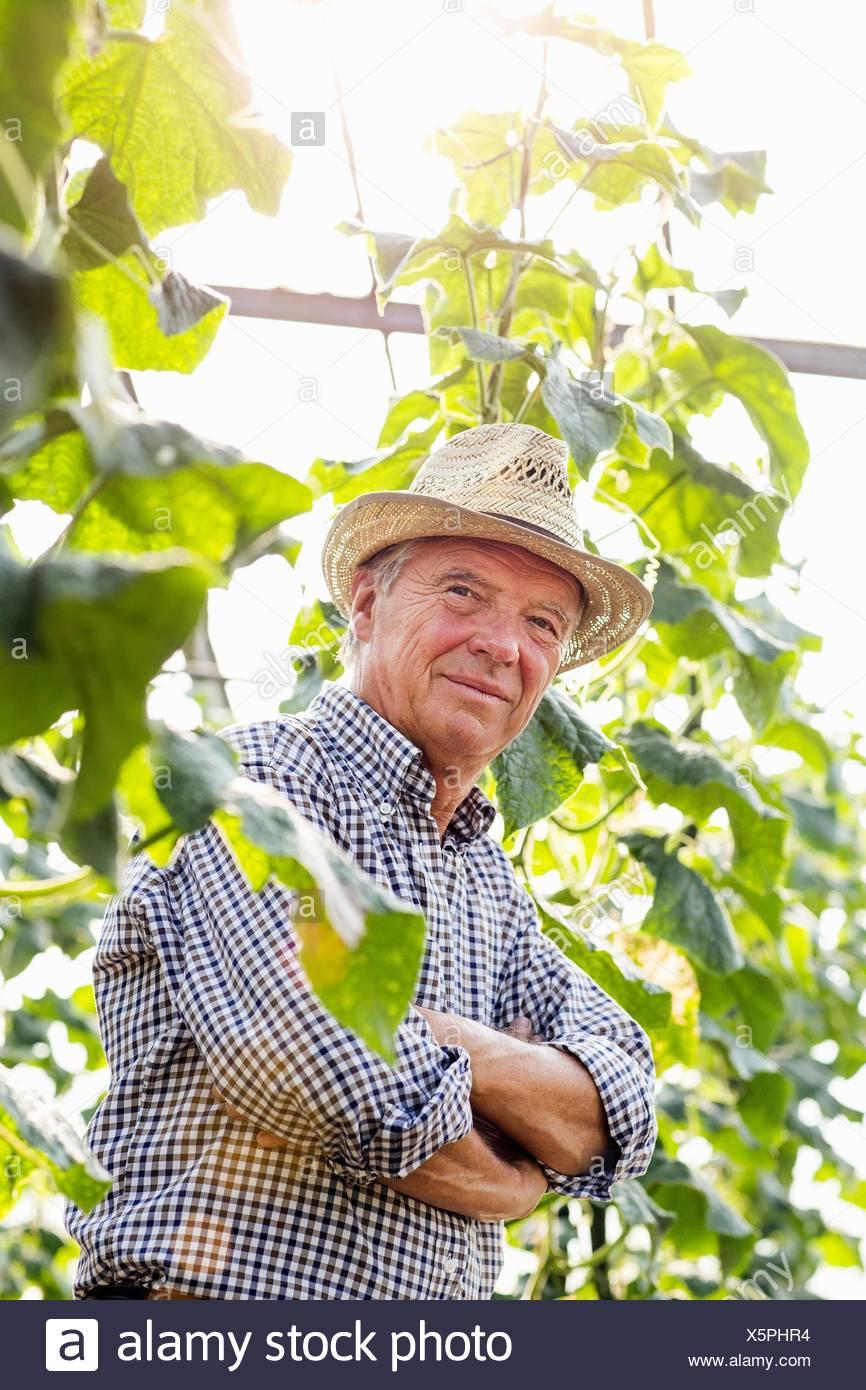 Senior man wearing hat entouré de plantes bras croisés looking at camera smiling Photo Stock