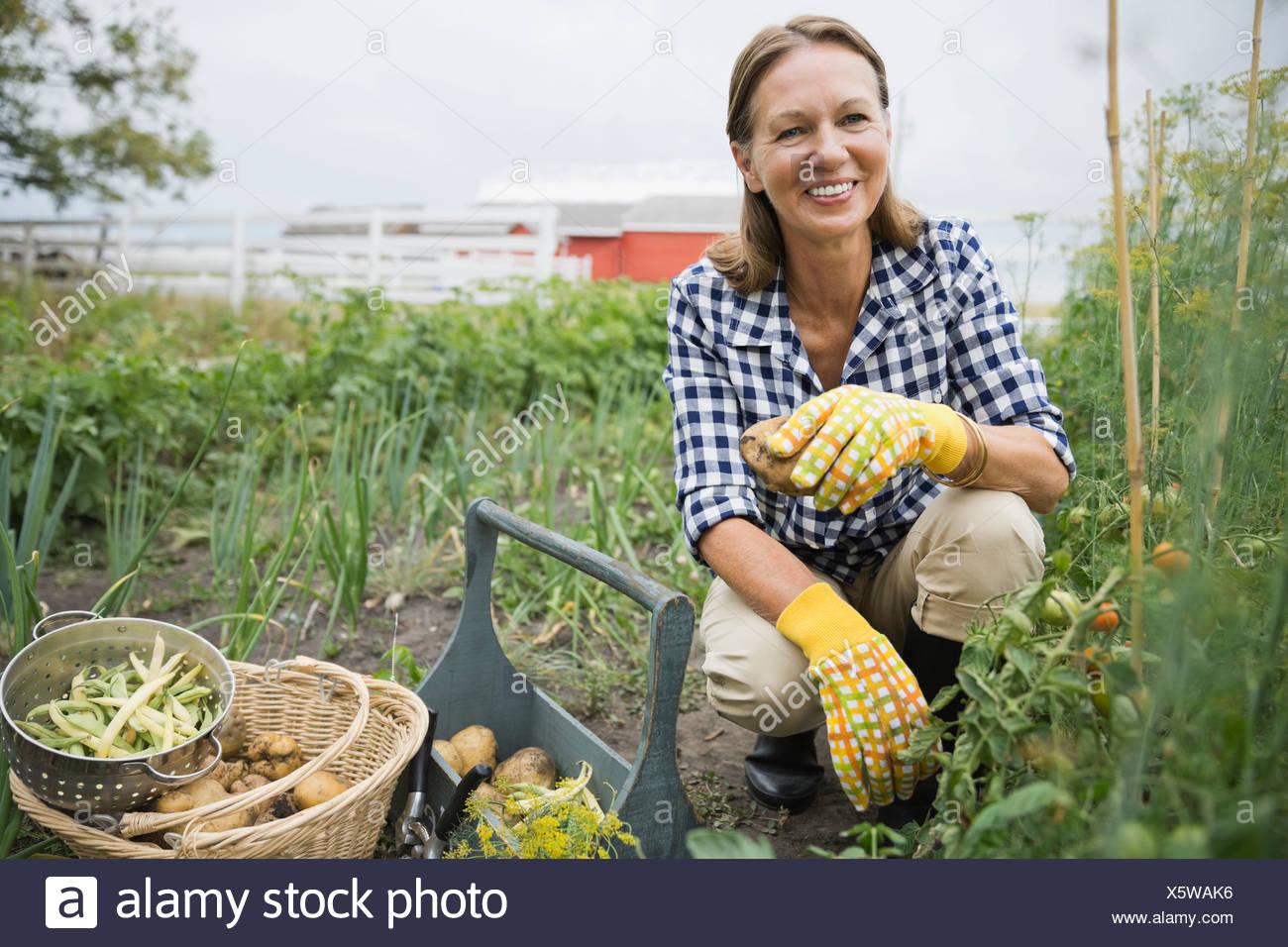Portrait of senior woman harvesting vegetables Photo Stock