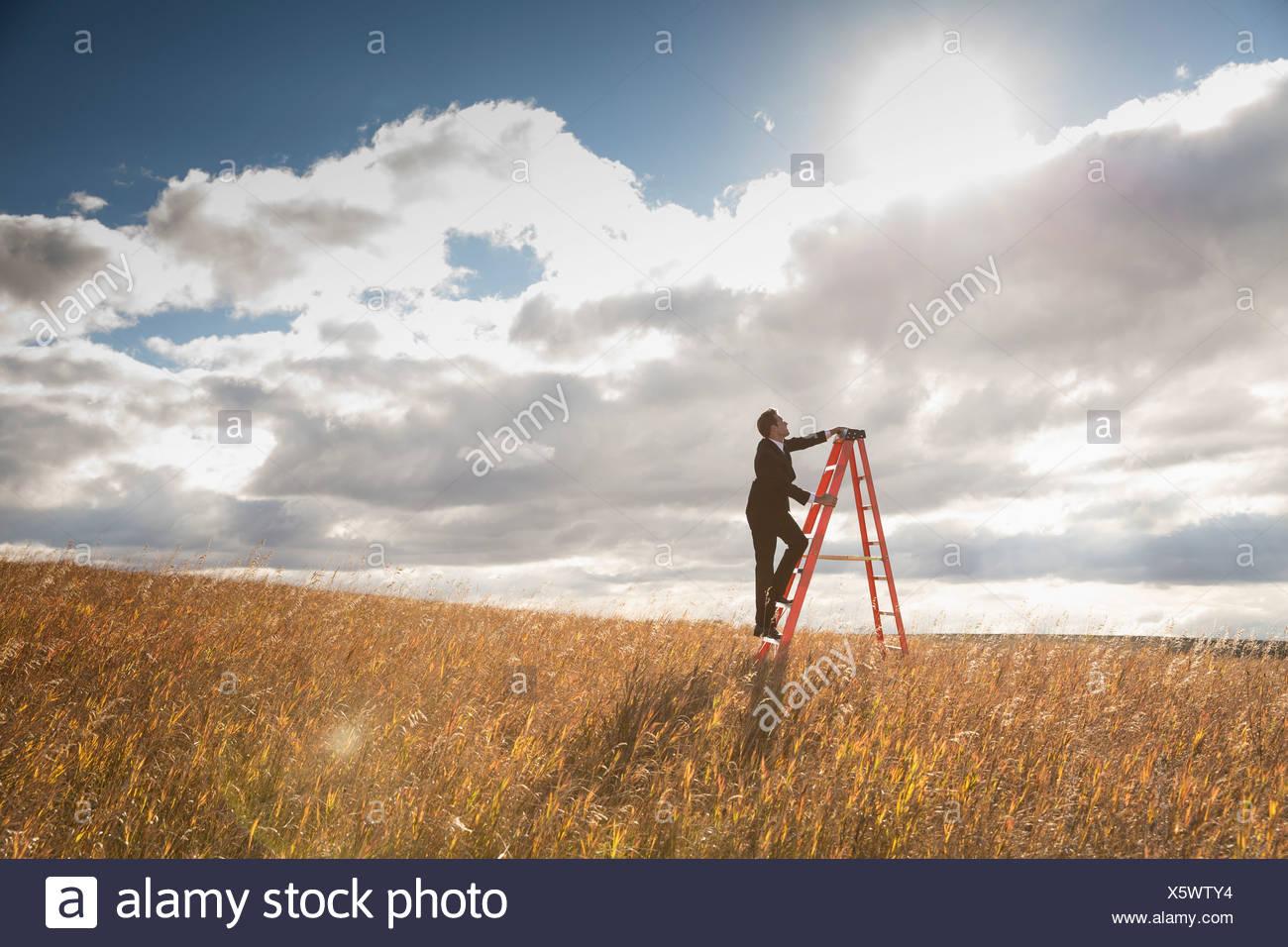 Escalade homme d'escabeau dans le champ Photo Stock