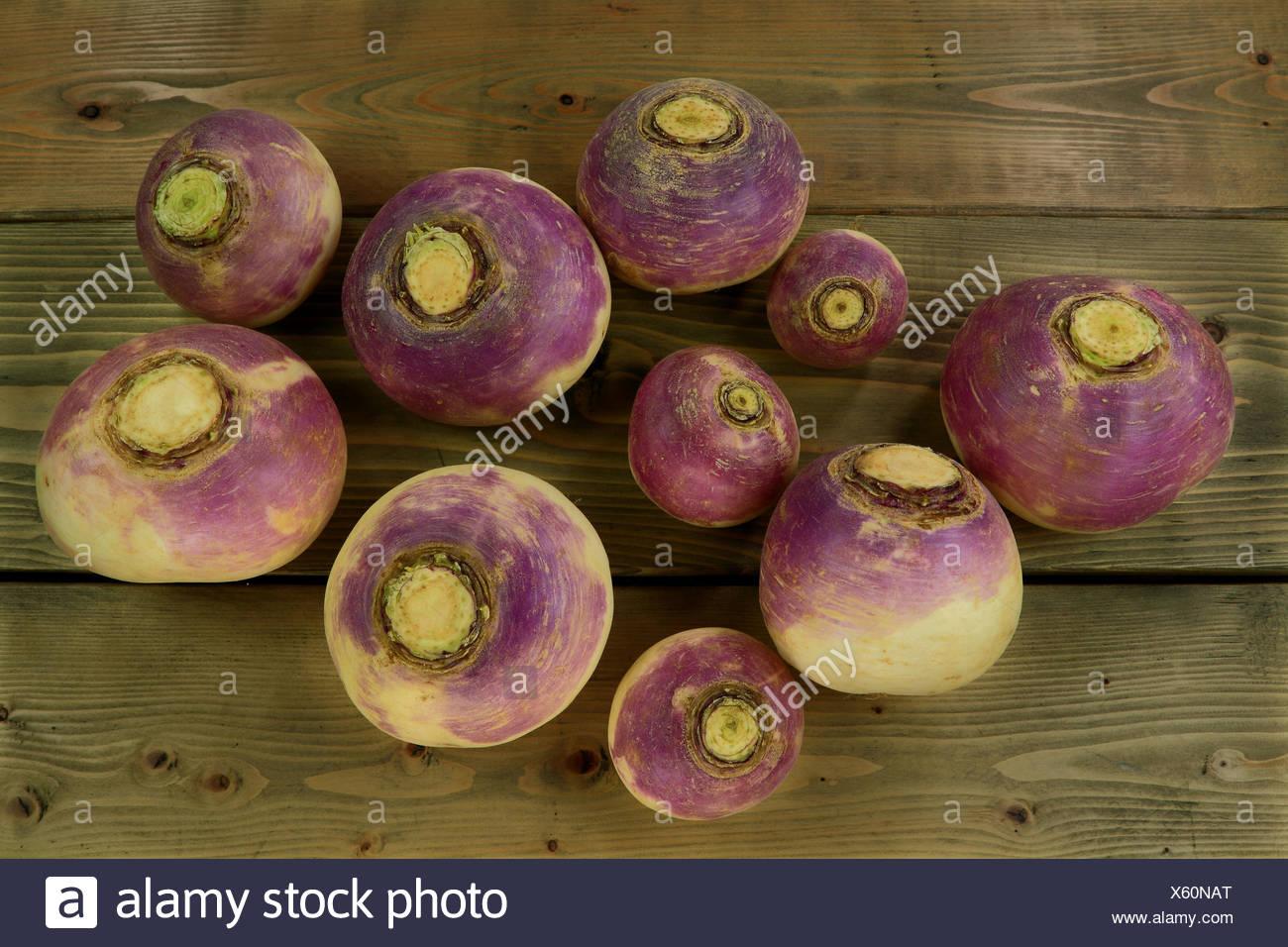 Le Navet légumes racines Photo Stock