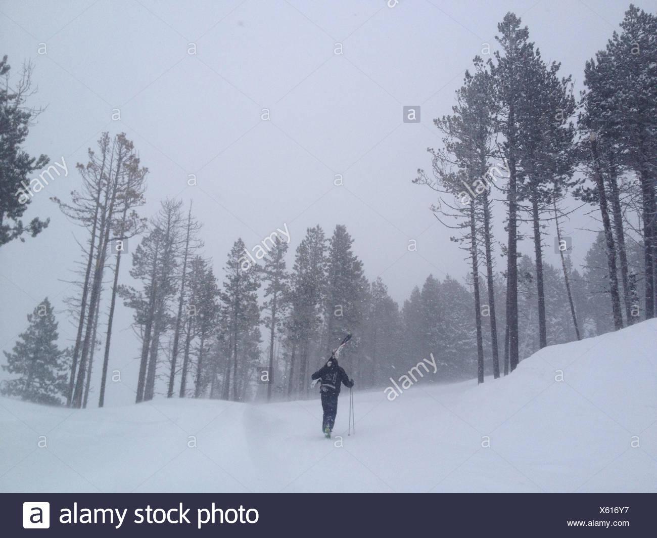 Vue arrière de l'homme de marcher jusqu'à la colline, ciel comptable Photo Stock