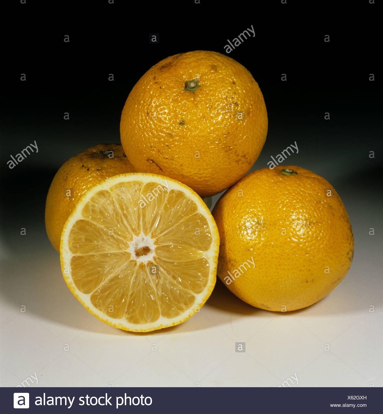 Ensemble & pamplemousse en quartiers pauvres fruits variété Sunfruit ou Mans Orange, origine Swaziland Photo Stock