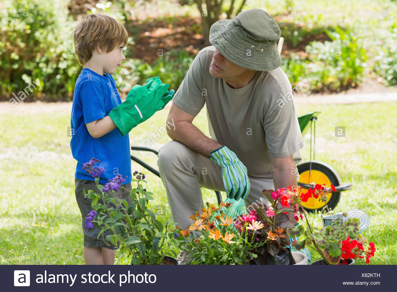 Grand-père et petit-fils engaged in gardening Photo Stock