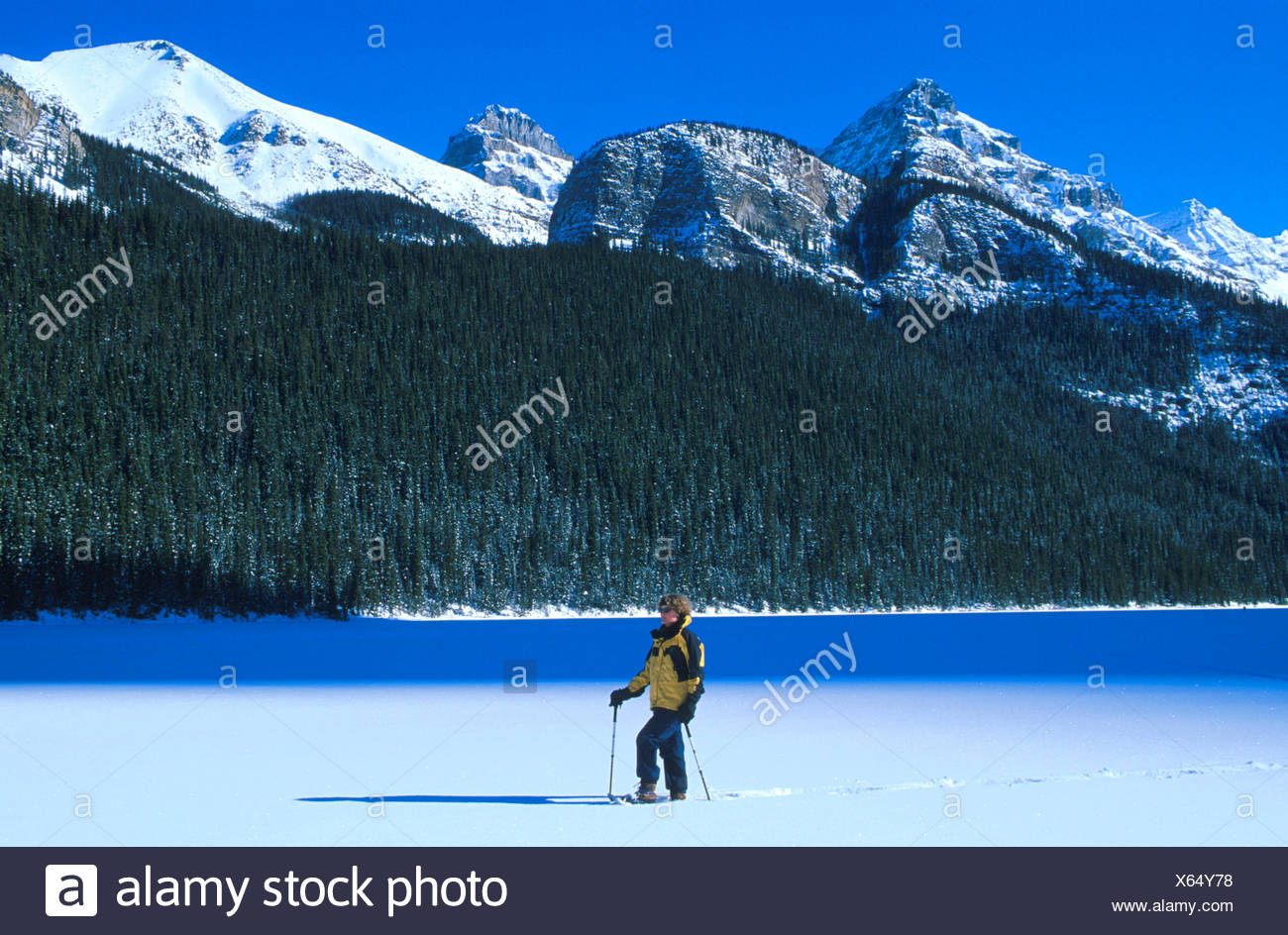 La Raquette à Lake Louise, Banff National Park, Alberta, Canada, M. 0009 Photo Stock