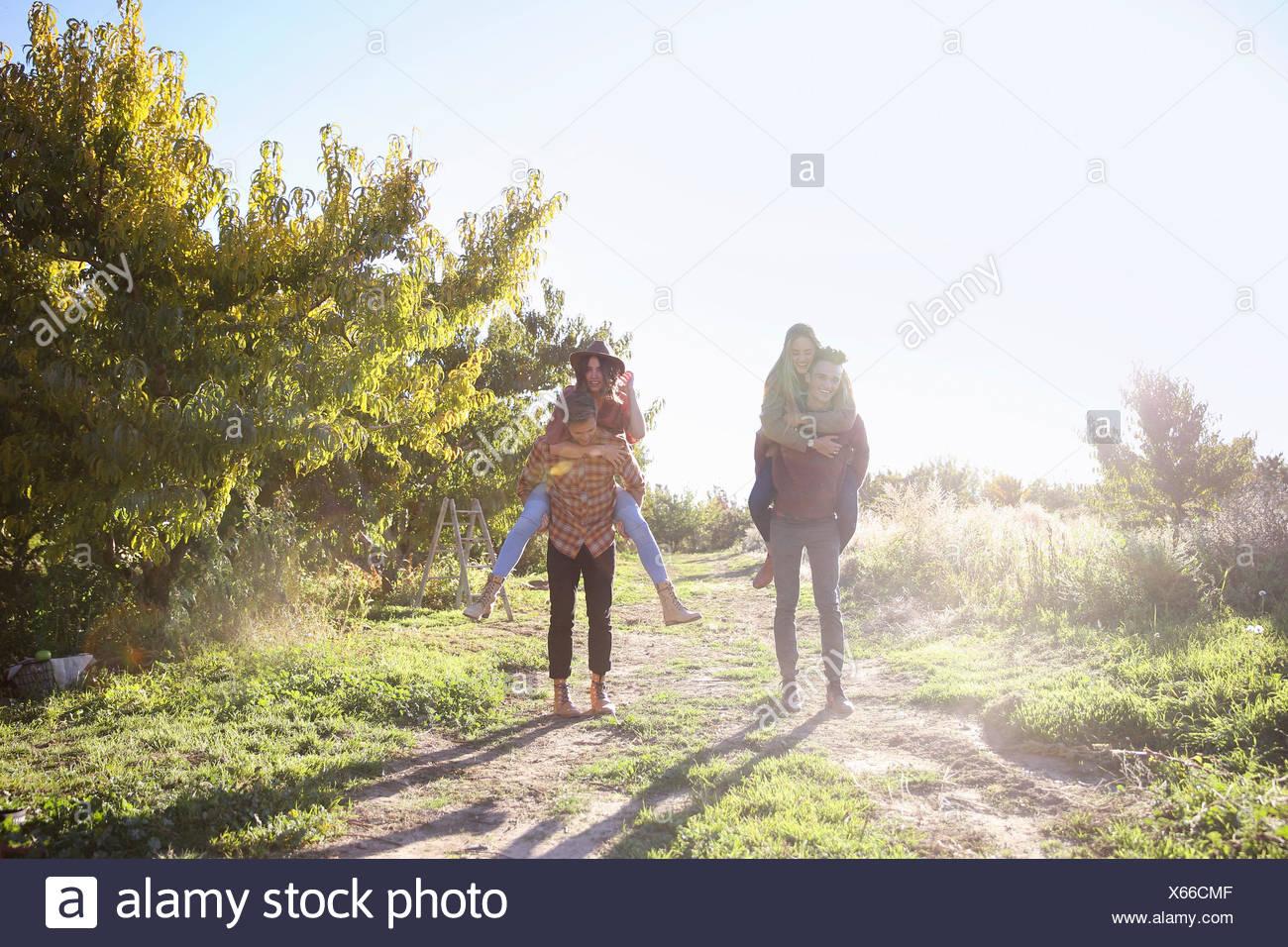 Apple orchard. Deux couples de marcher le long d'un chemin. Photo Stock