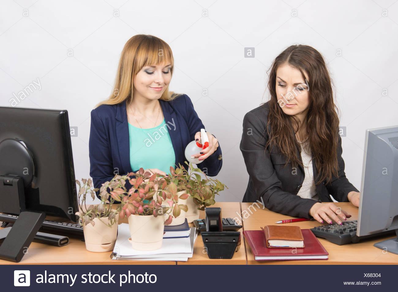 Employé de bureau semble hostile au Colegio, obsédé houseplants Photo Stock