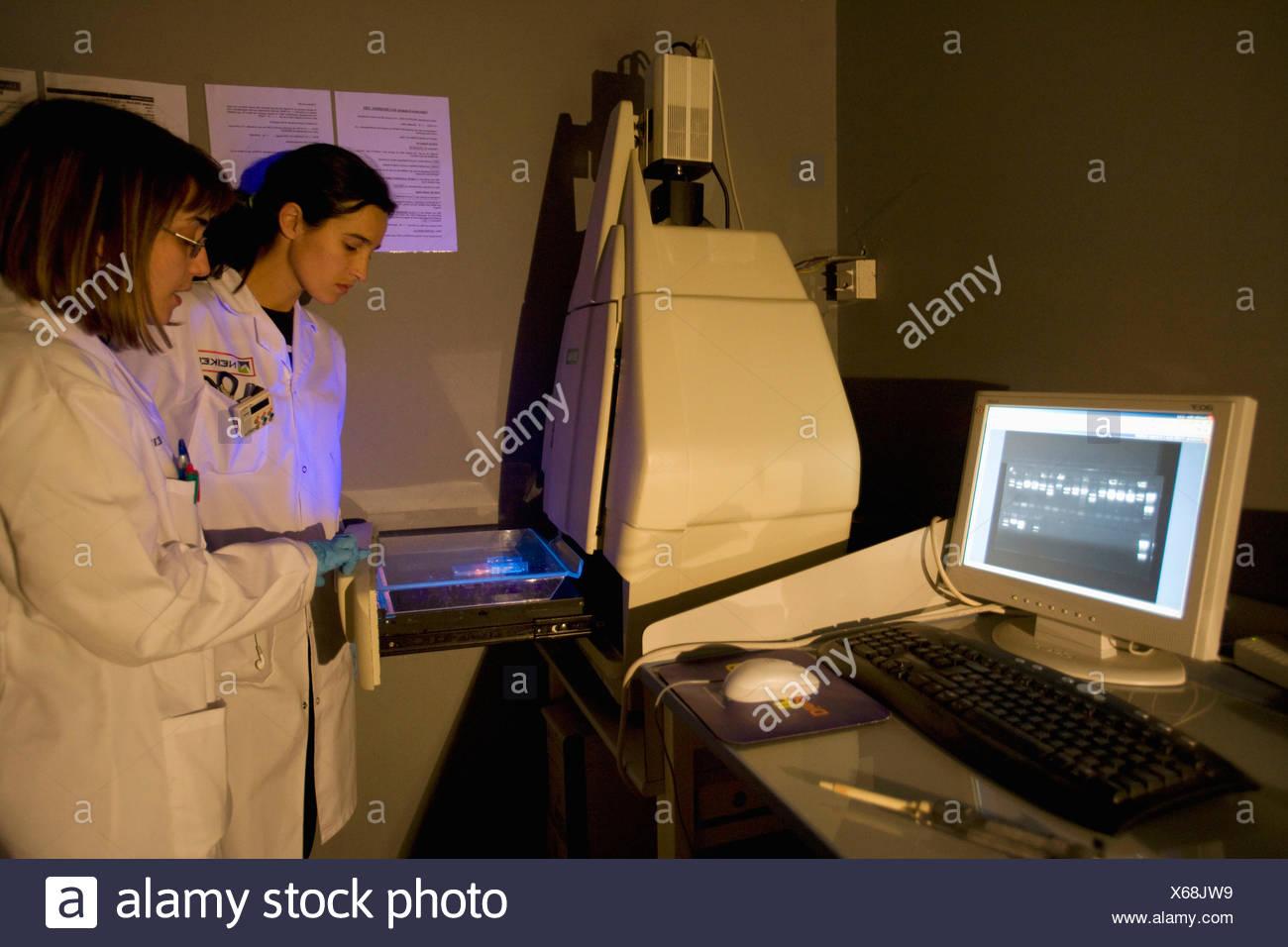 Transilluminateur UV pour la visualisation de l'électrophorèse sur gel d'Agarose. Chemidoc Système. Laboratoire de biotechnologie, Neiker Photo Stock