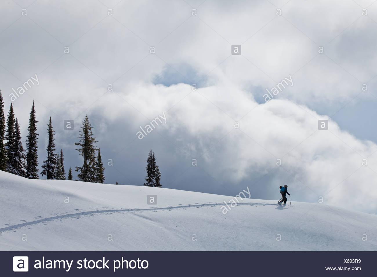 Un homme ski de randonnée à Sol Mountain Lodge, Monashees, près de Revelstoke, British Columbia, Canada Photo Stock