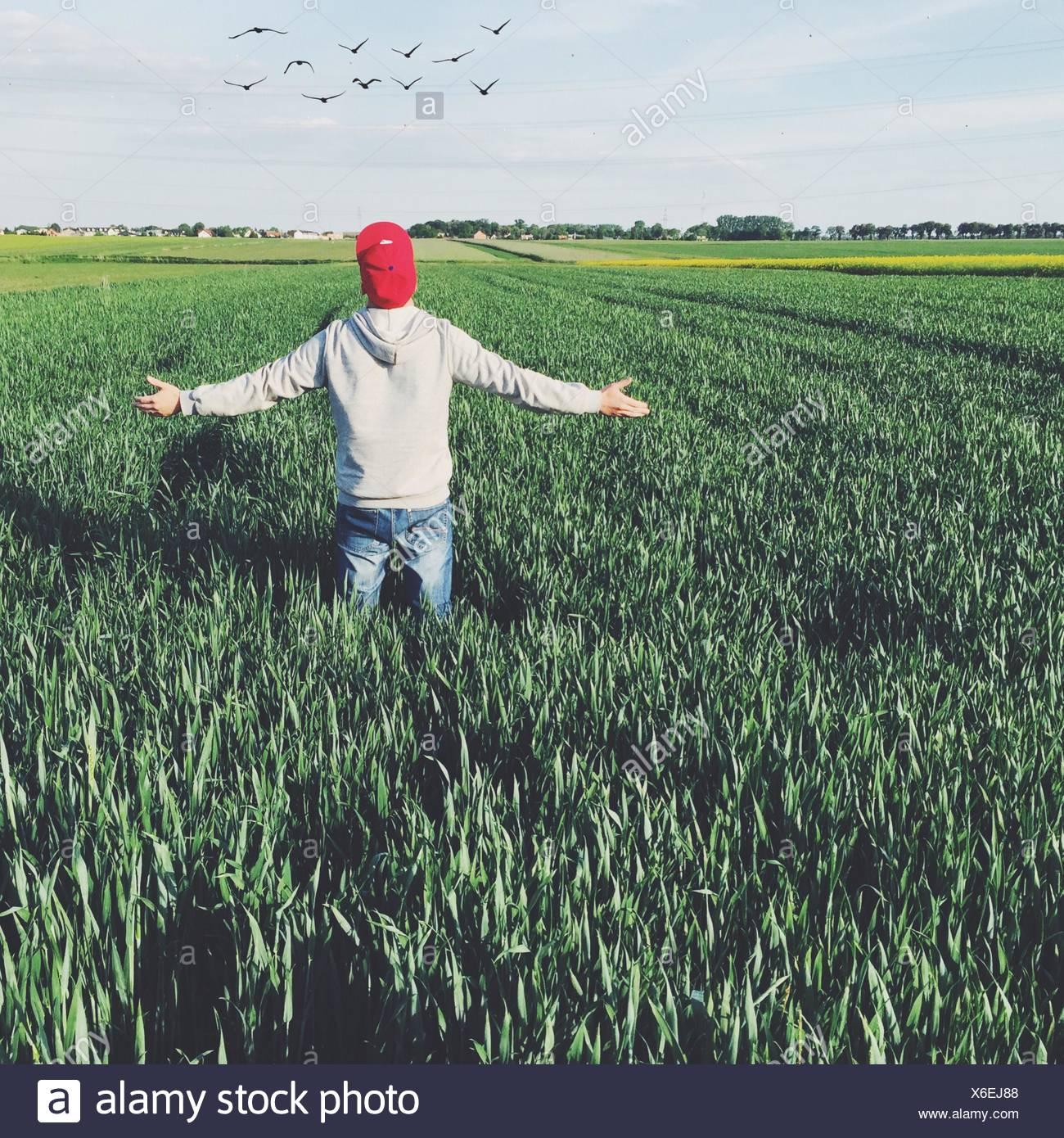Vue arrière de l'homme à l'aide contre le ciel On Grassy Field Photo Stock