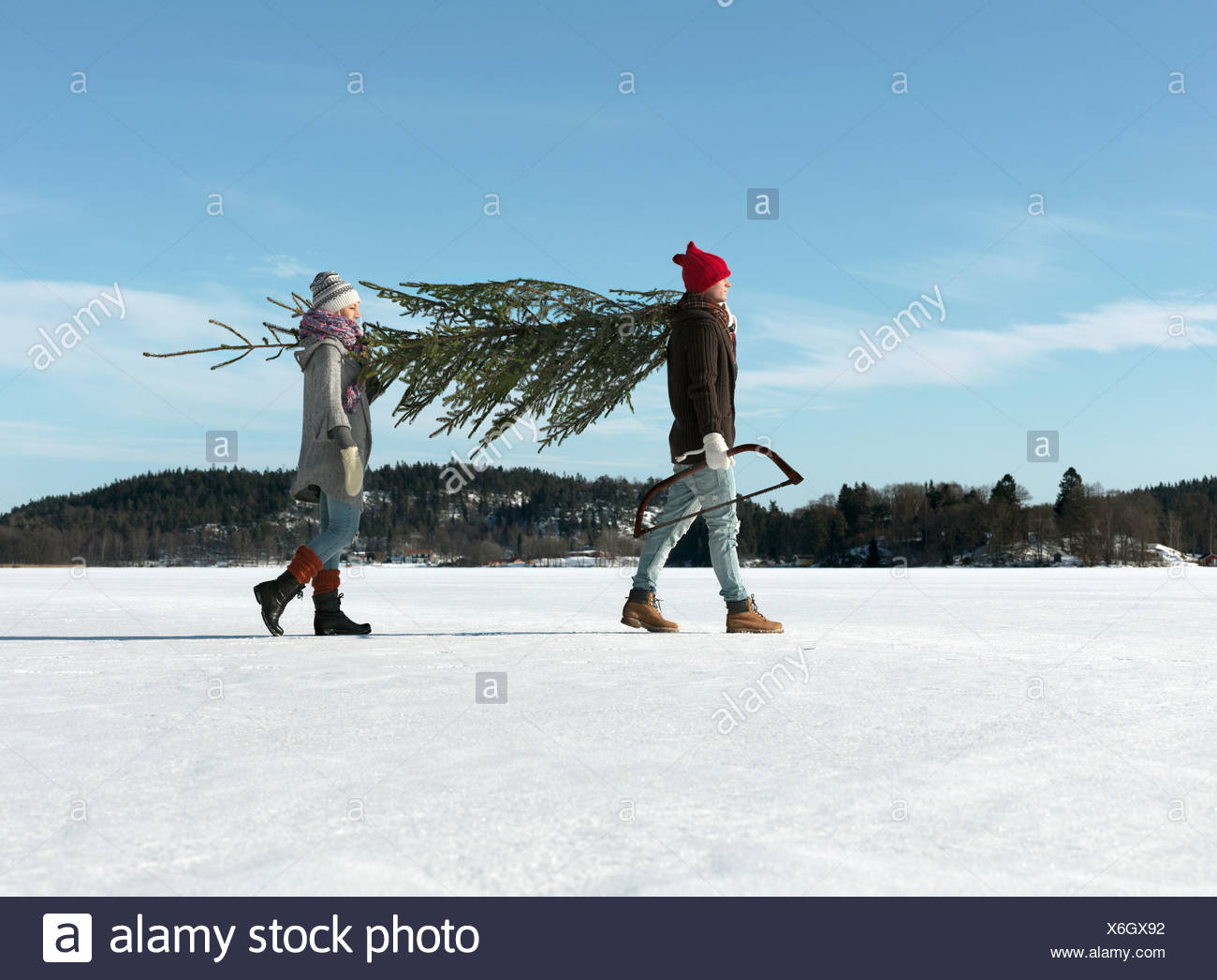 Couple avec arbre de Noël Photo Stock