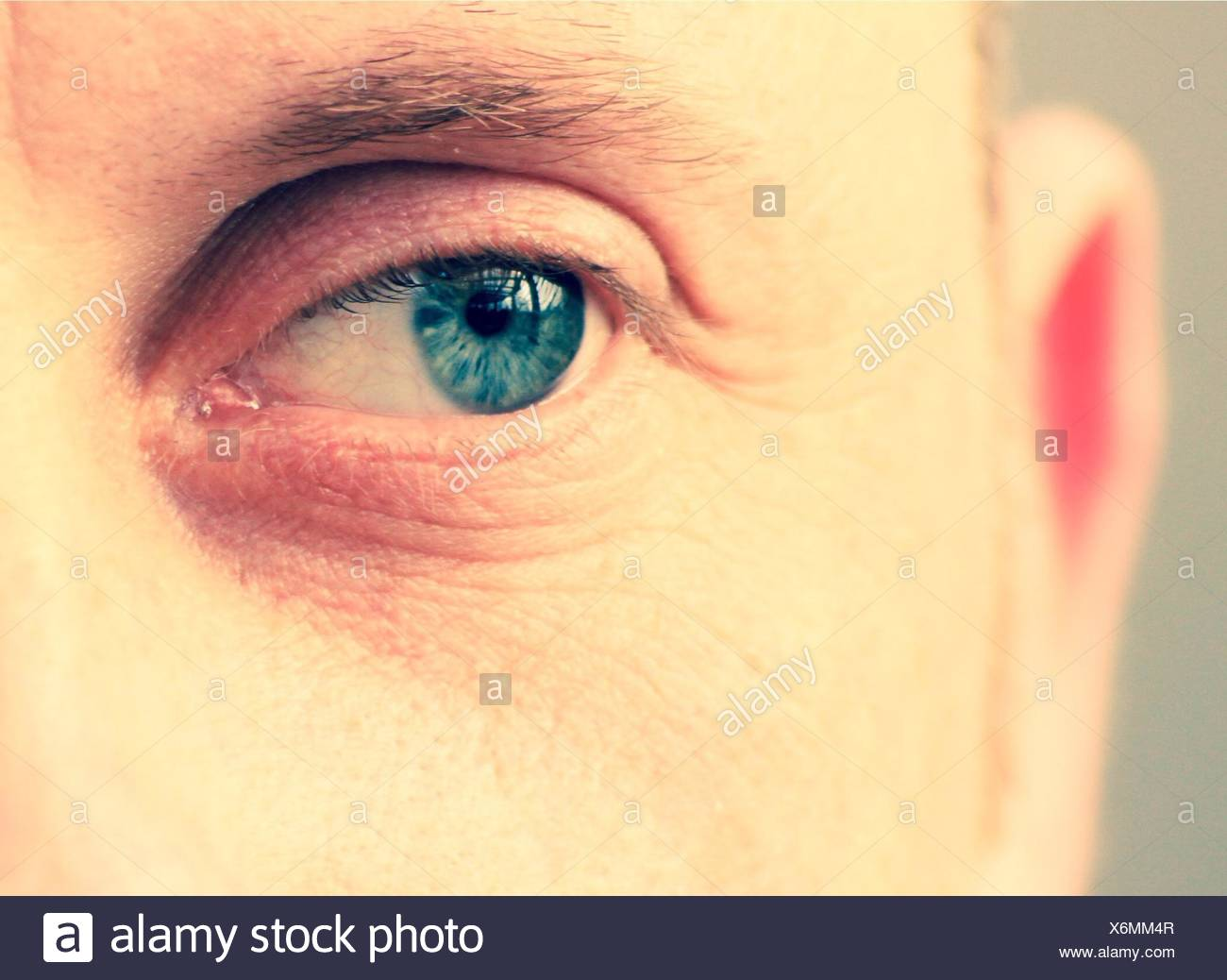Extreme Close Up of Eye mâle Photo Stock