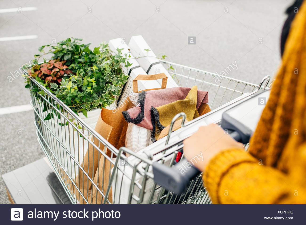 Portrait woman pushing trolley plein d'achats dans le parc automobile Photo Stock