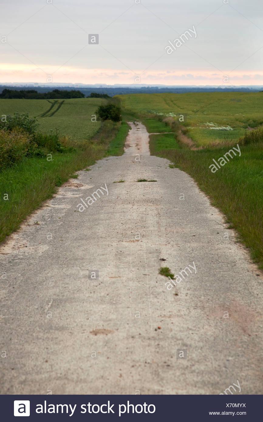 Asphalte, chemin, horizon, soir Photo Stock