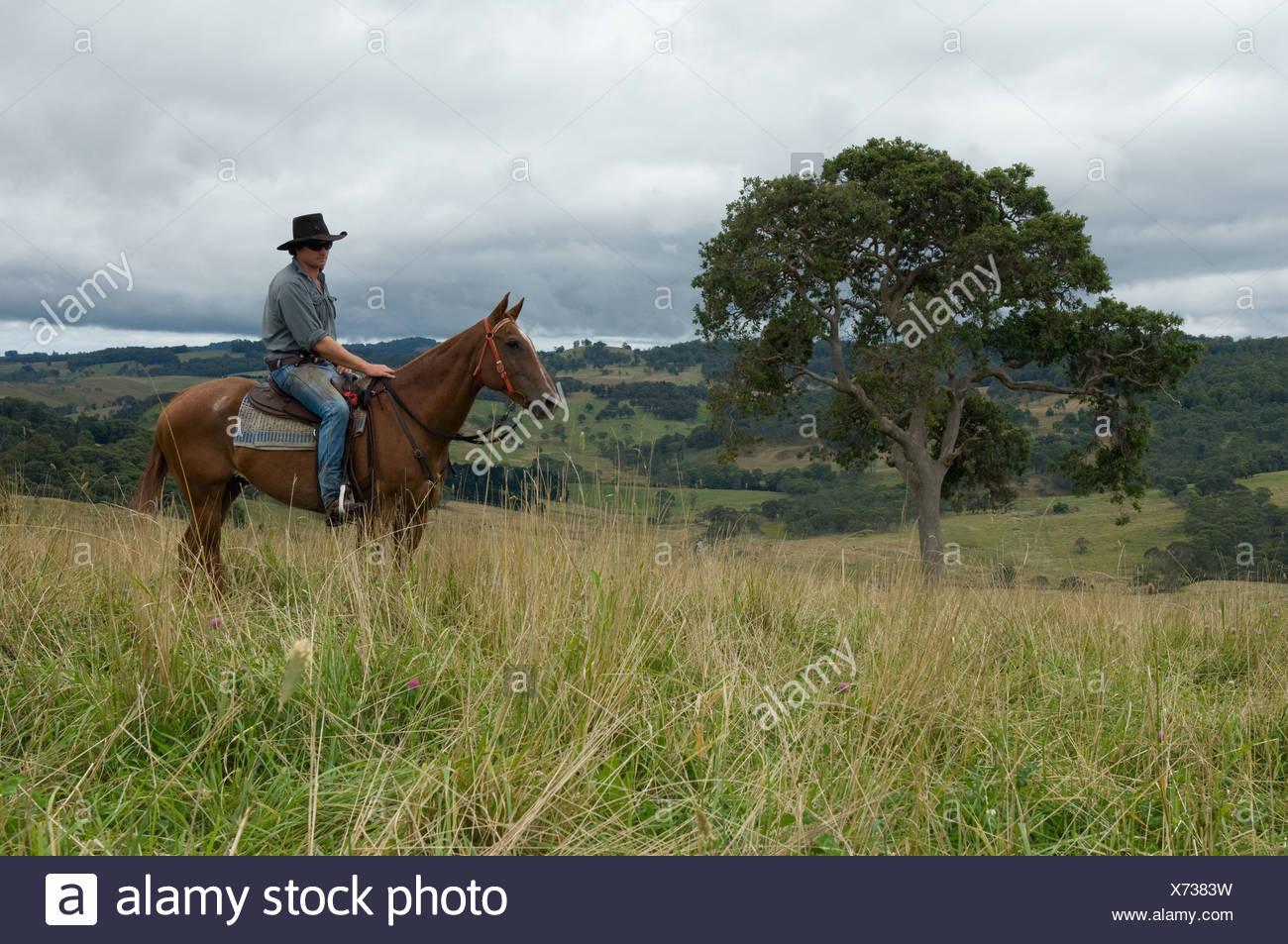 Rider sur l'homme en Australie Photo Stock