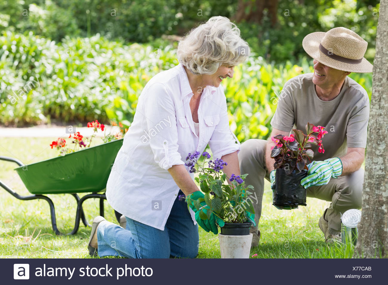 Couple engaged in gardening Photo Stock
