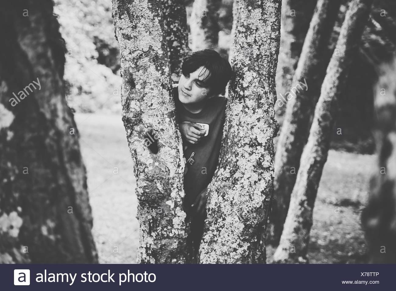 Jeune homme debout derrière les troncs des arbres en Parc Photo Stock