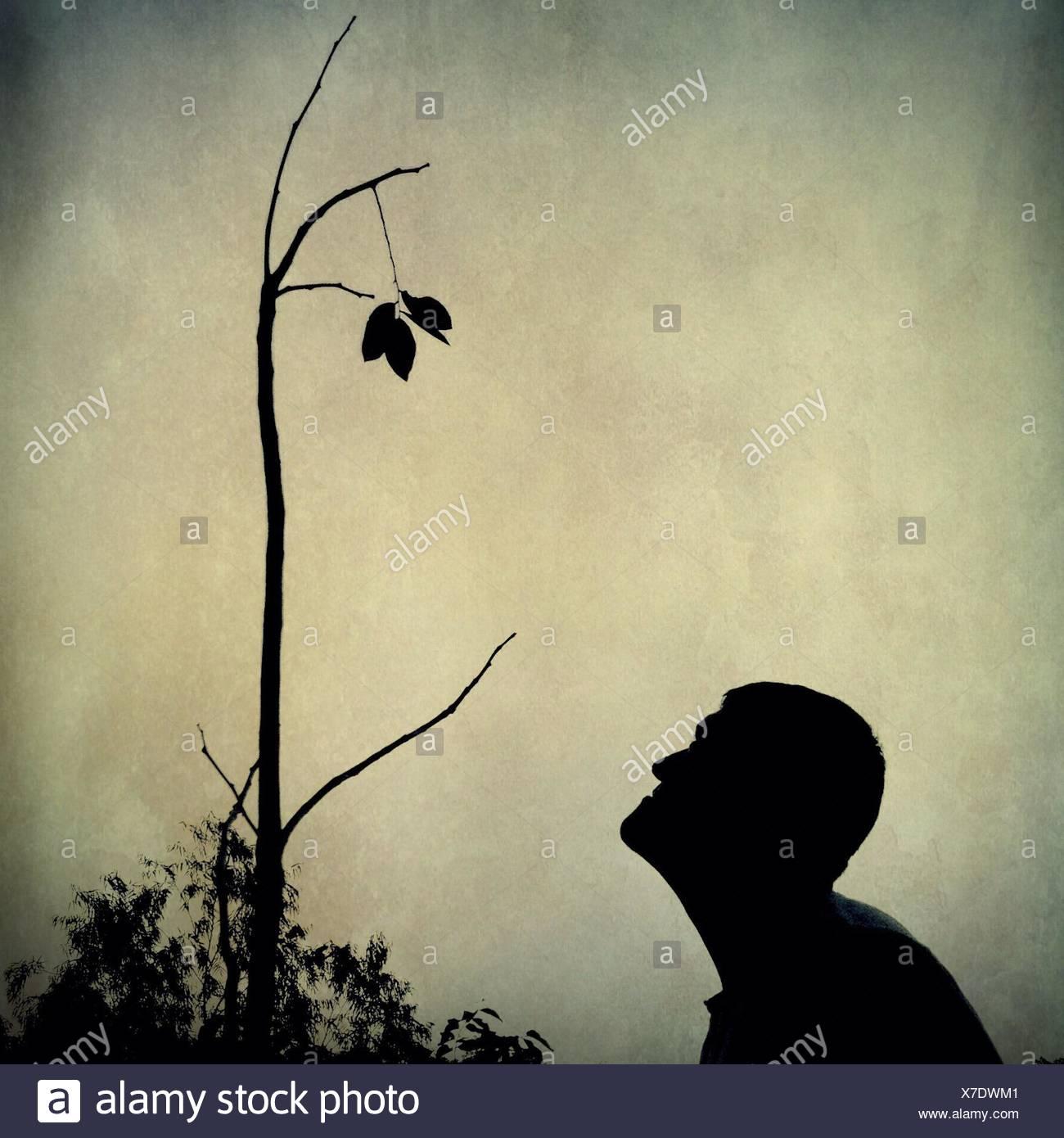 L'homme Silhouette contre le ciel laisse regarder Photo Stock