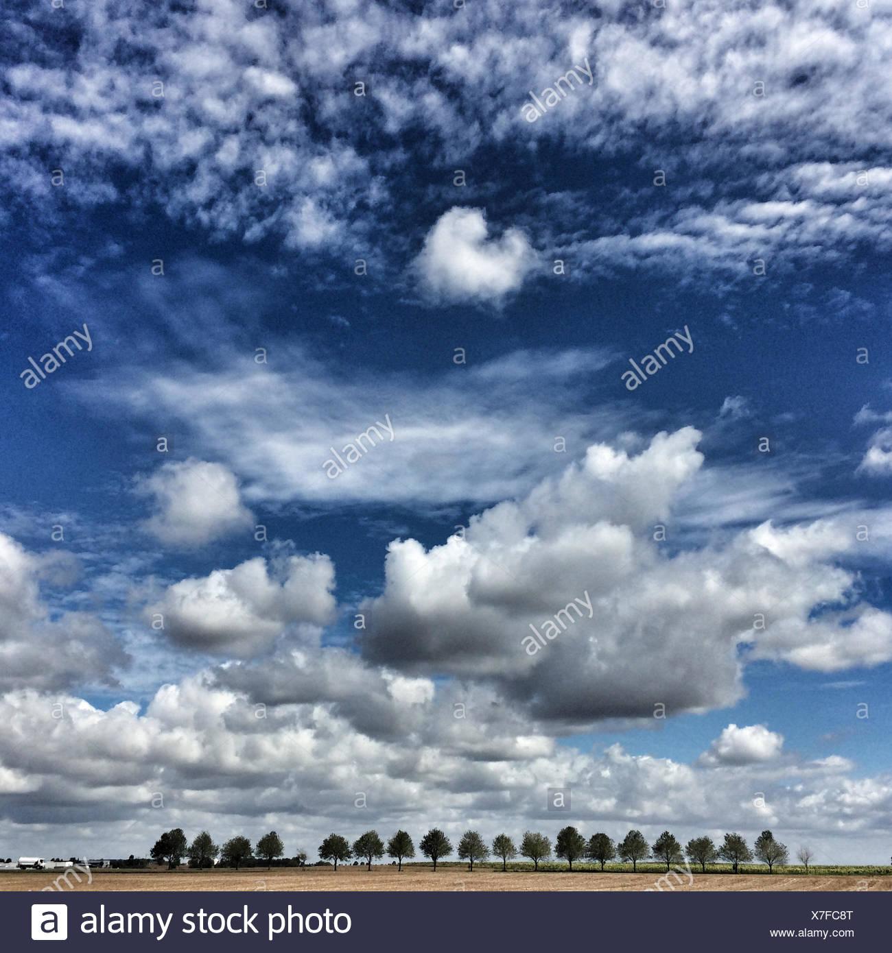 En France, deux Sevres, Paysage avec des rangées d'arbres dans la distance et cloudscape Photo Stock