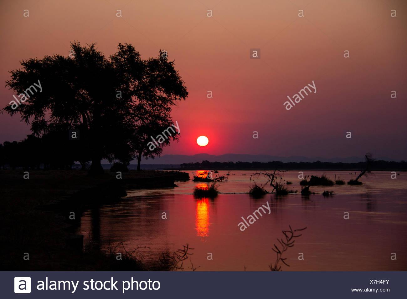 Coucher de soleil sur le Zambèze, Mana Pools National Park, Zimbabwe, Africa Banque D'Images