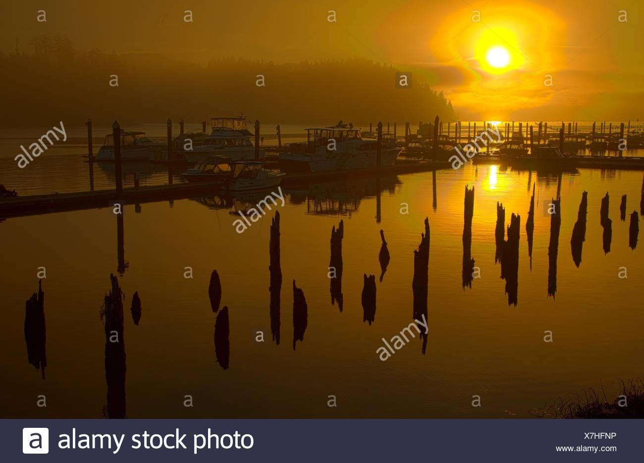 Marina sunrise, Florence, Oregon. Photo Stock