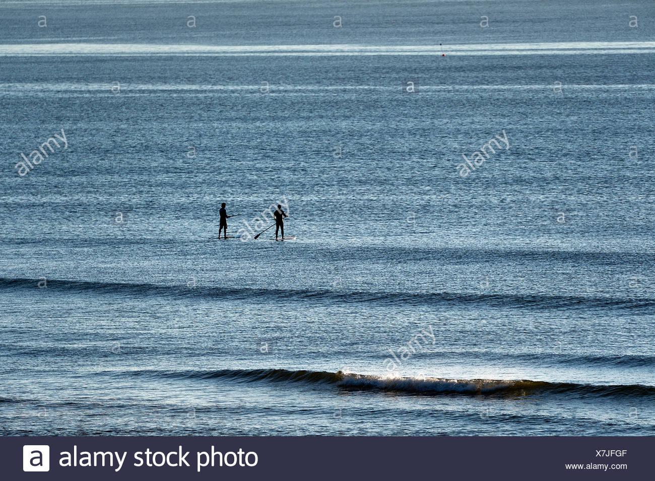 Surfers Paddle board en tête d'attraper une vague, Coast Guard Beach, Cape Cod, Massachusetts, USA Photo Stock